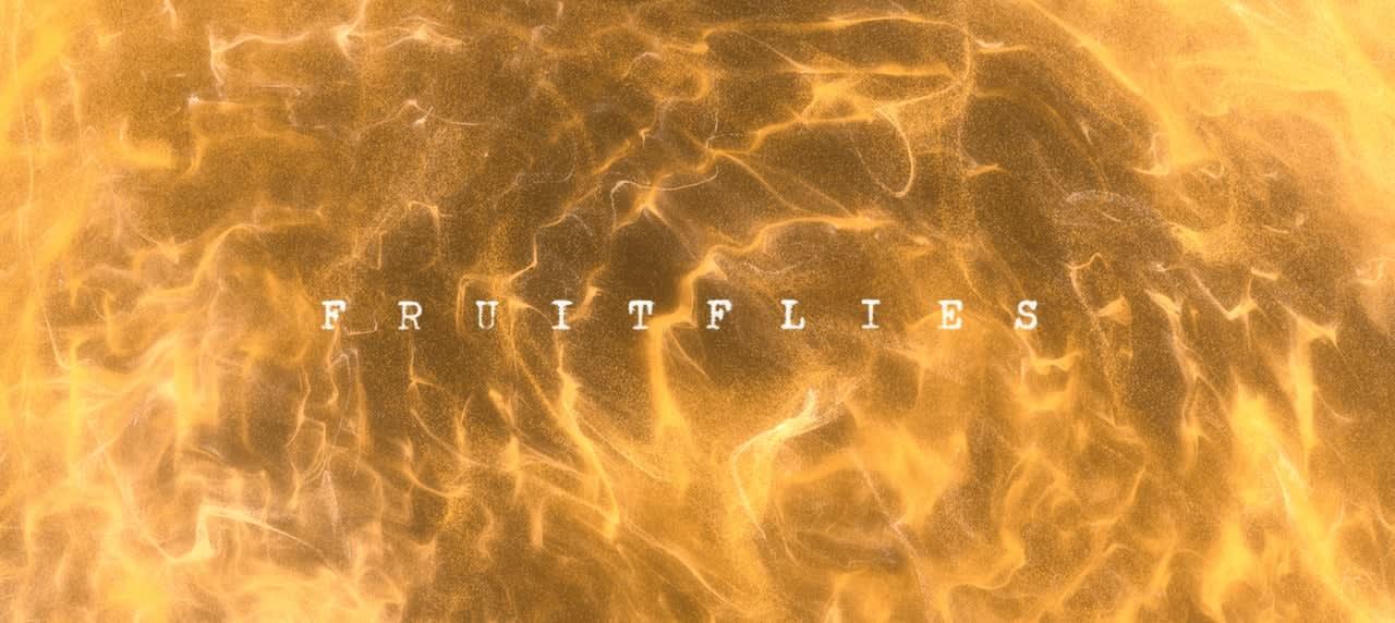 Gabriel Garzón-Montano - Fruitflies