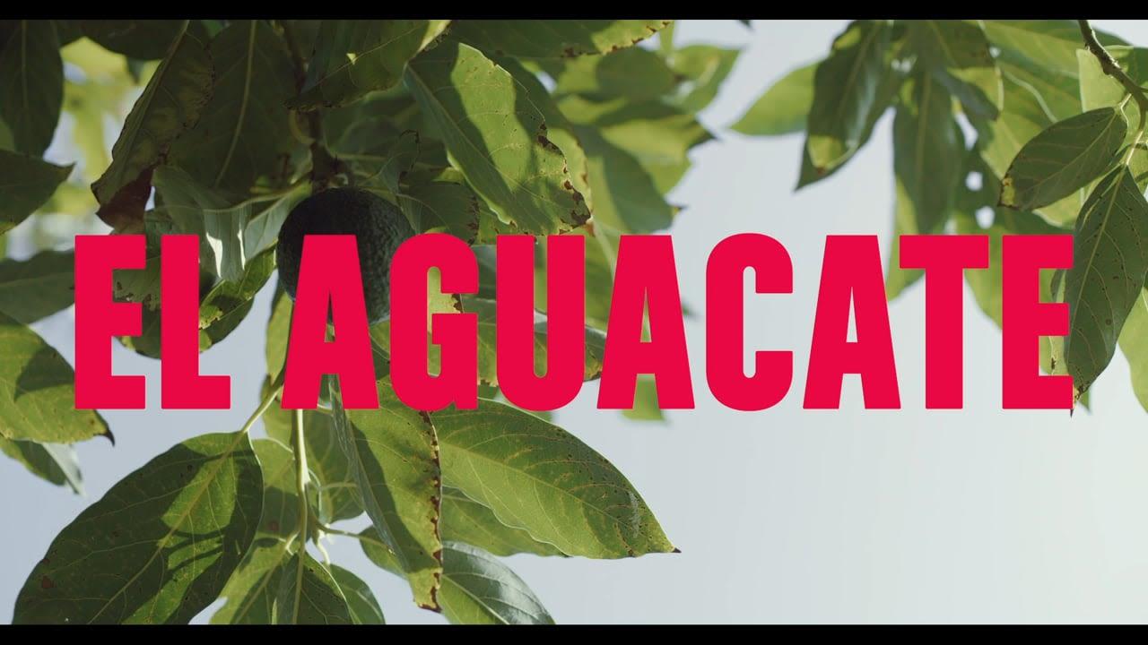 EL AGUACATE - short film