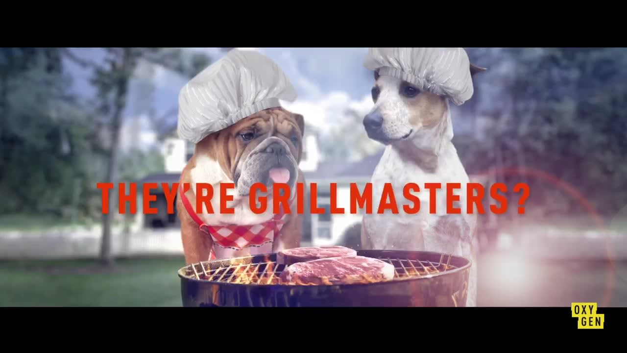 Secret Life of Pets Commerical