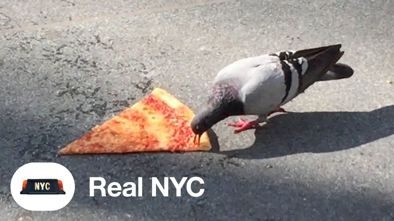 Real Stickers NYC - Sticker app for real New Yorkers