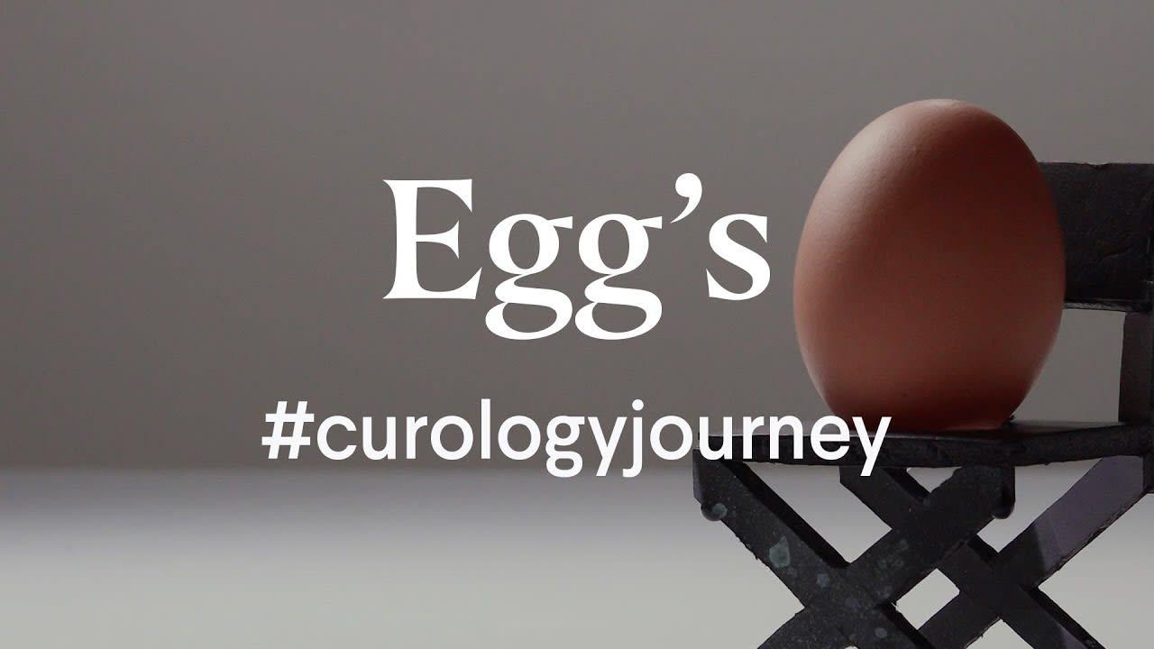 Egg's Curology Journey