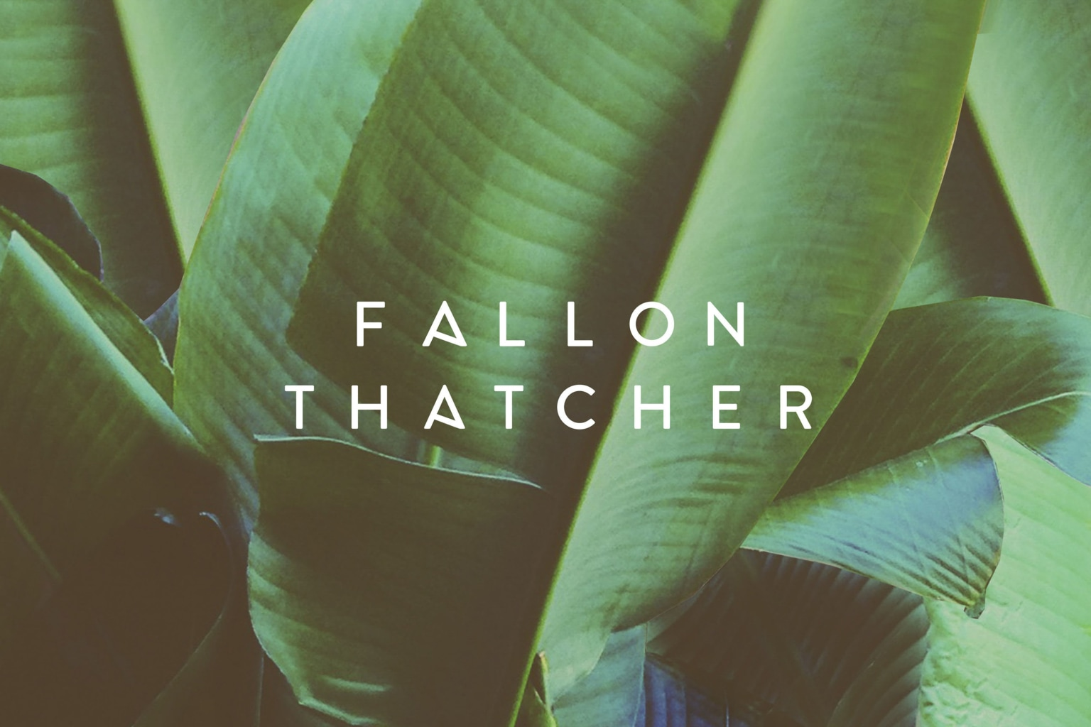 Fallon Thatcher
