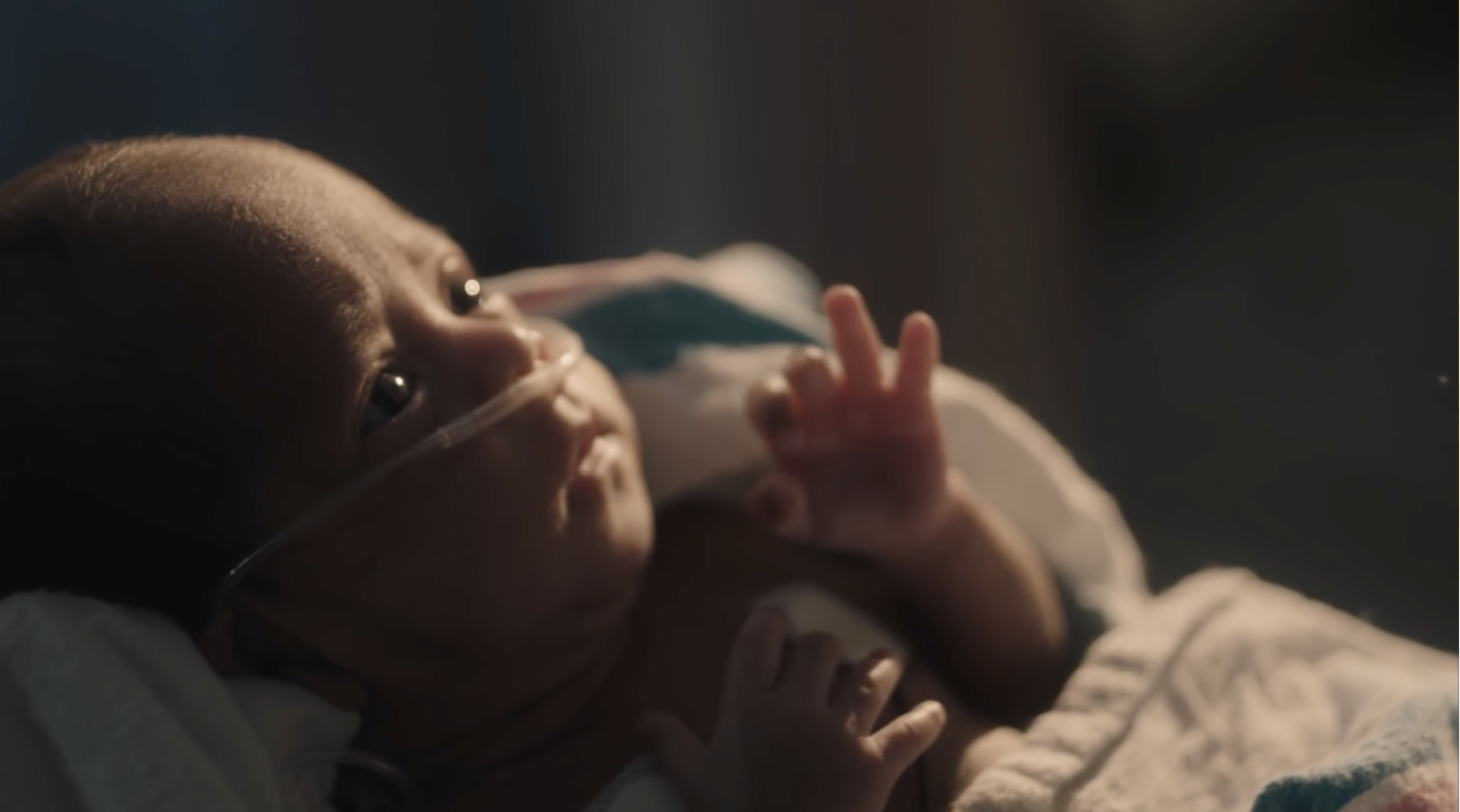 Pampers   World Prematurity Day