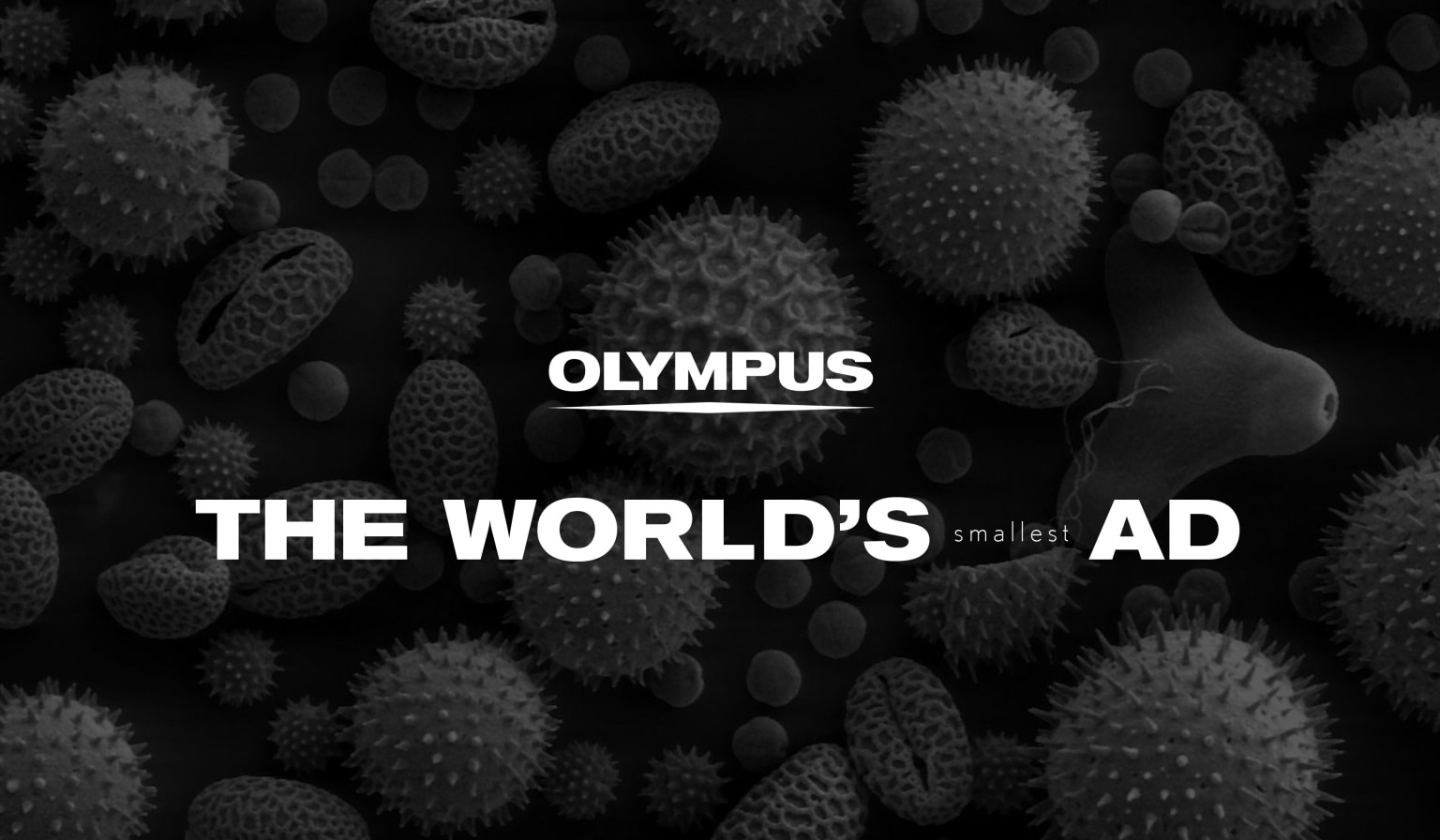 Olympus - World's Smallest Ad