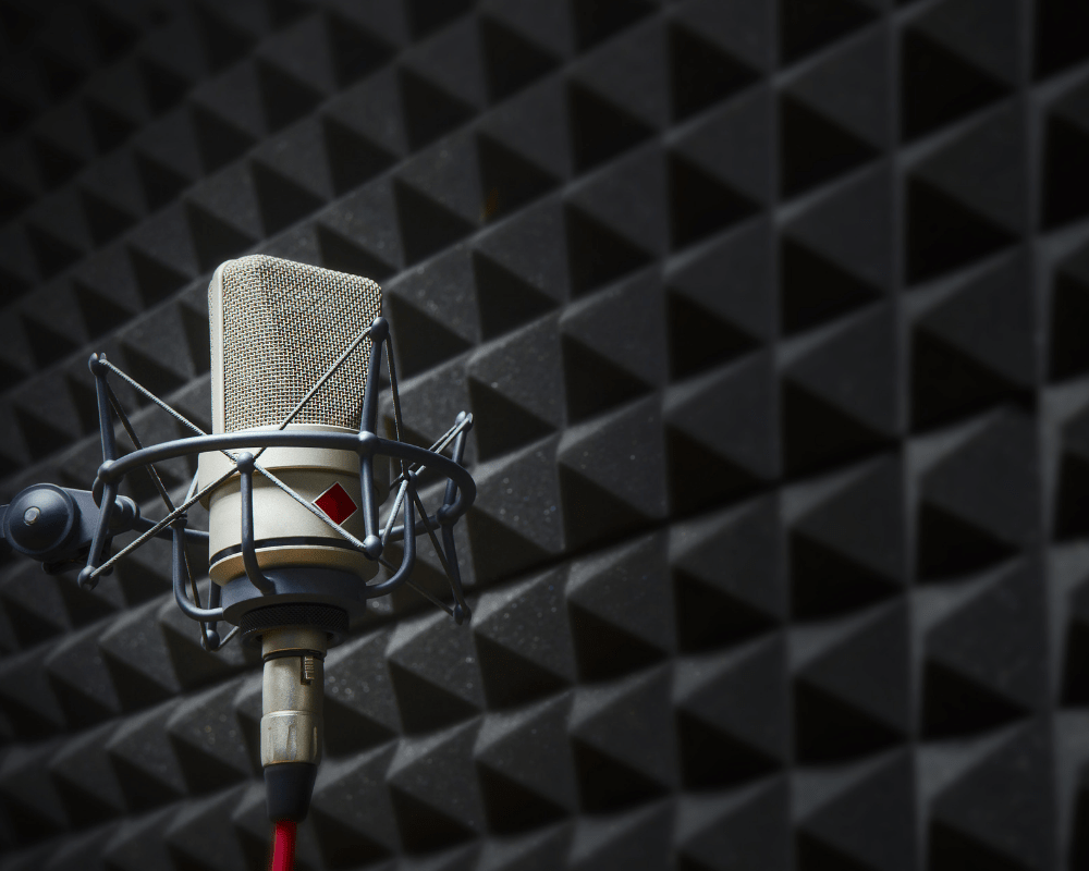 Voice Over Narration Demo