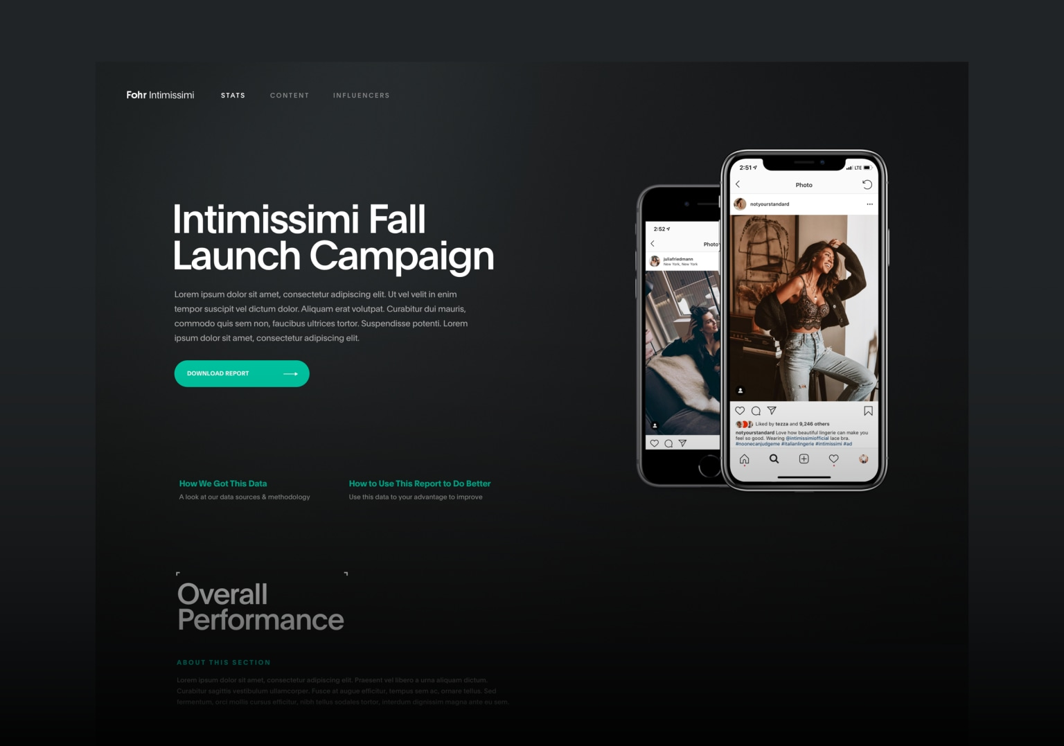 Influencer Campaign Reporting