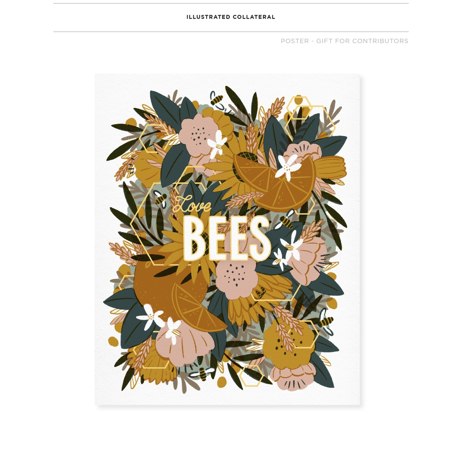 American Beekeeping Federation Brand Identity, Pattern, & Illustrated Collateral