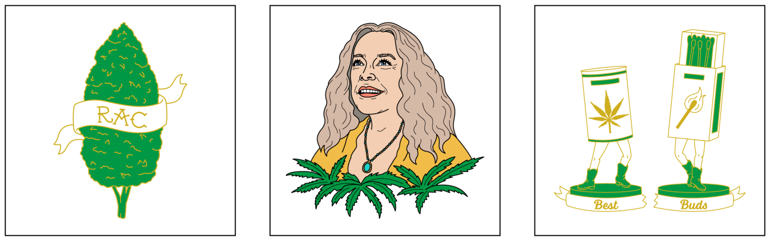 Disjointed: The Netflix Collection