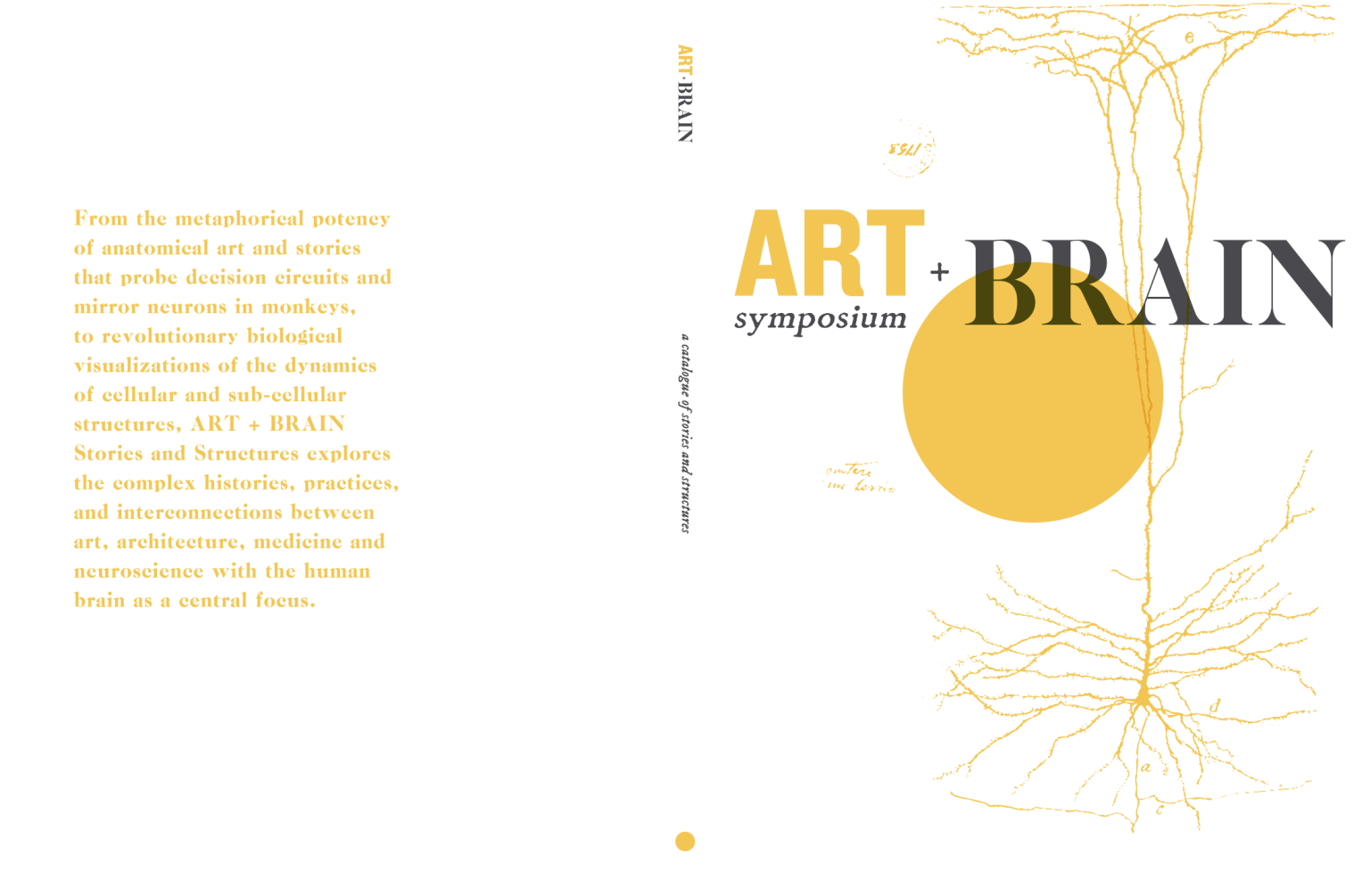 Art + Brain: Stories and Structures