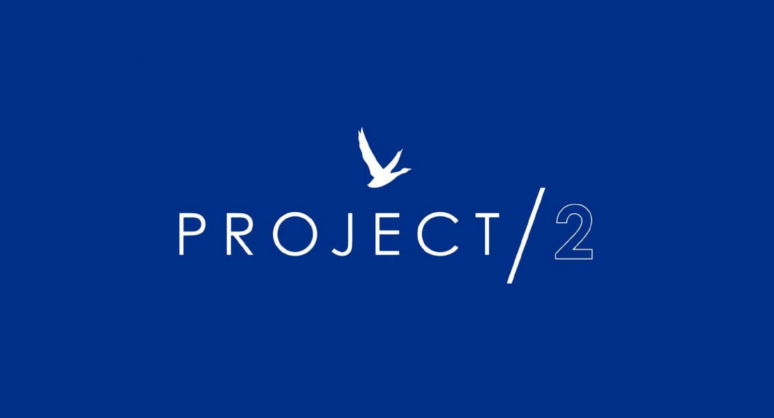 Grey Goose – Project / 2