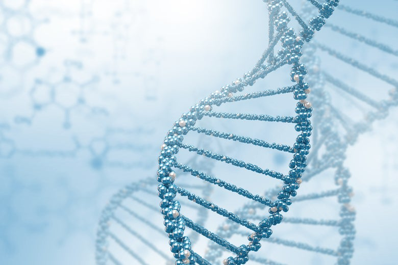 Slate Sponsored Article: What's In Your DNA?