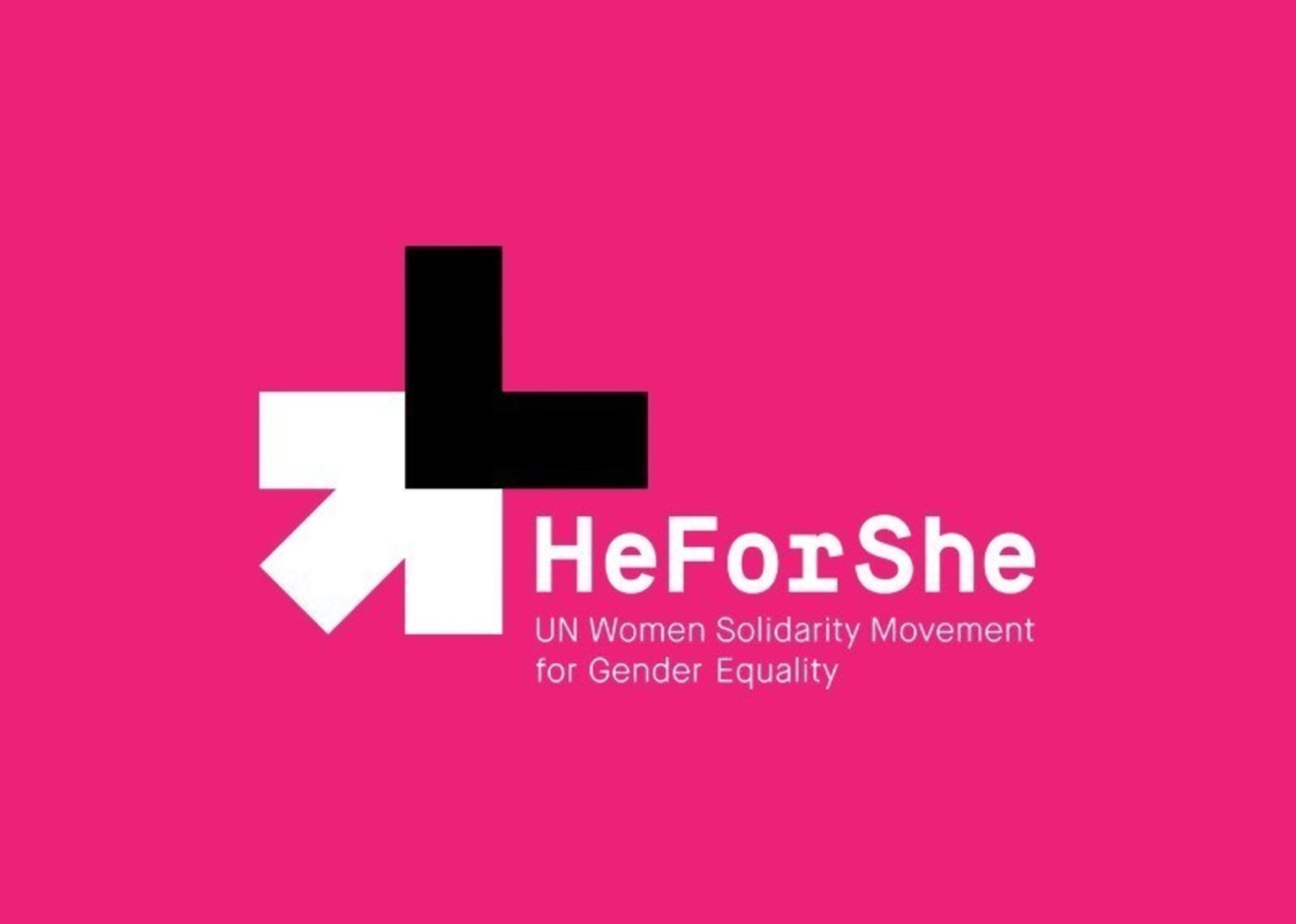 He For She: The Equality Illusion