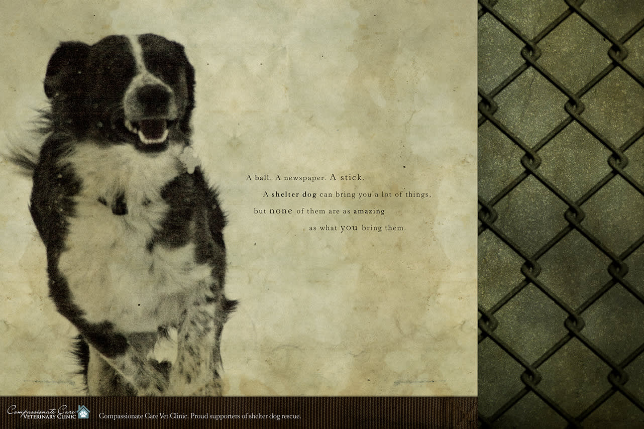 Compassionate Care Vet Clinic - Promotional