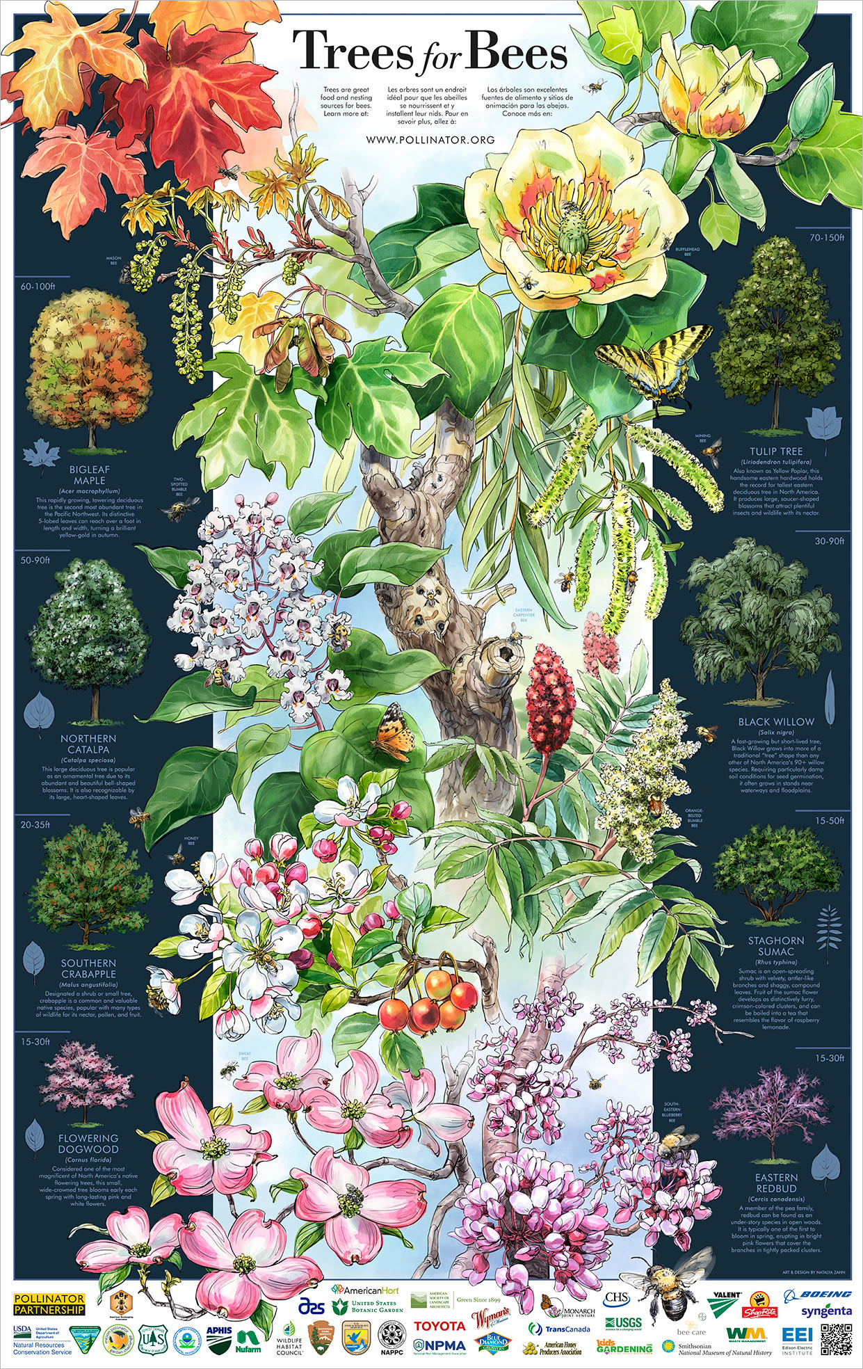 """""""Trees for Bees"""" Poster"""
