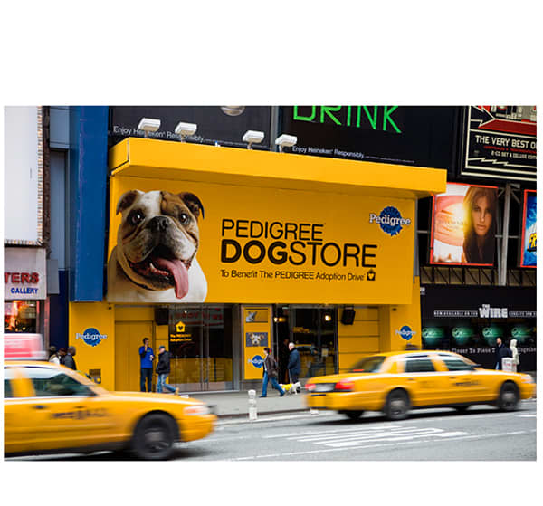 Pedigree Pop-Up Store