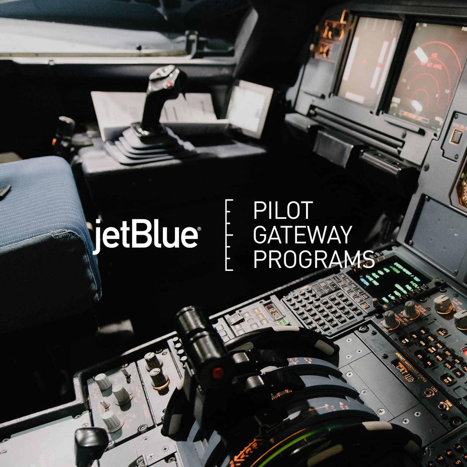 Pilot Gateway Programs Branding & Website