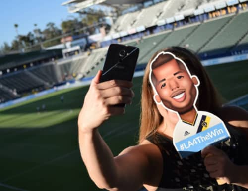 Alcatel x MLS