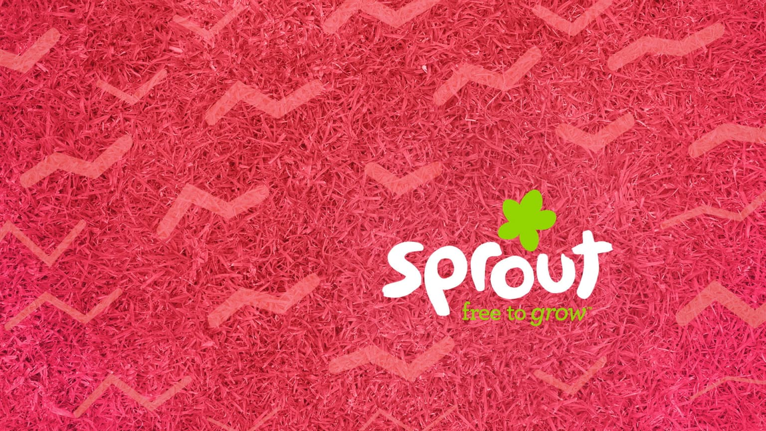 Sprout Network | 2015 Refresh