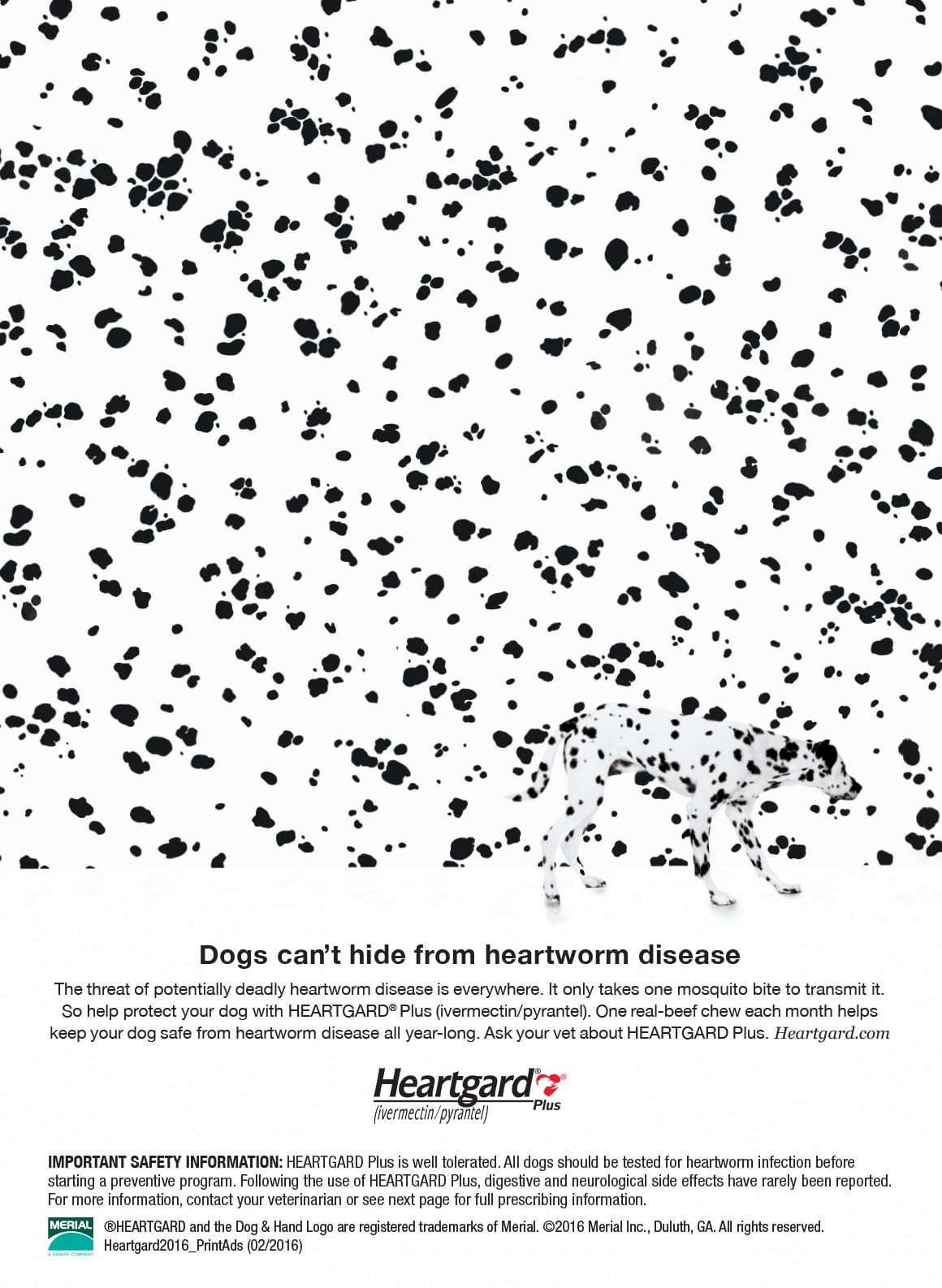 Dogs can't hide from heartworm disease