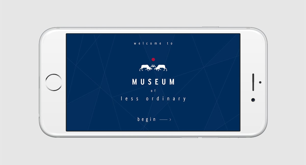 Museum of Less Ordinary
