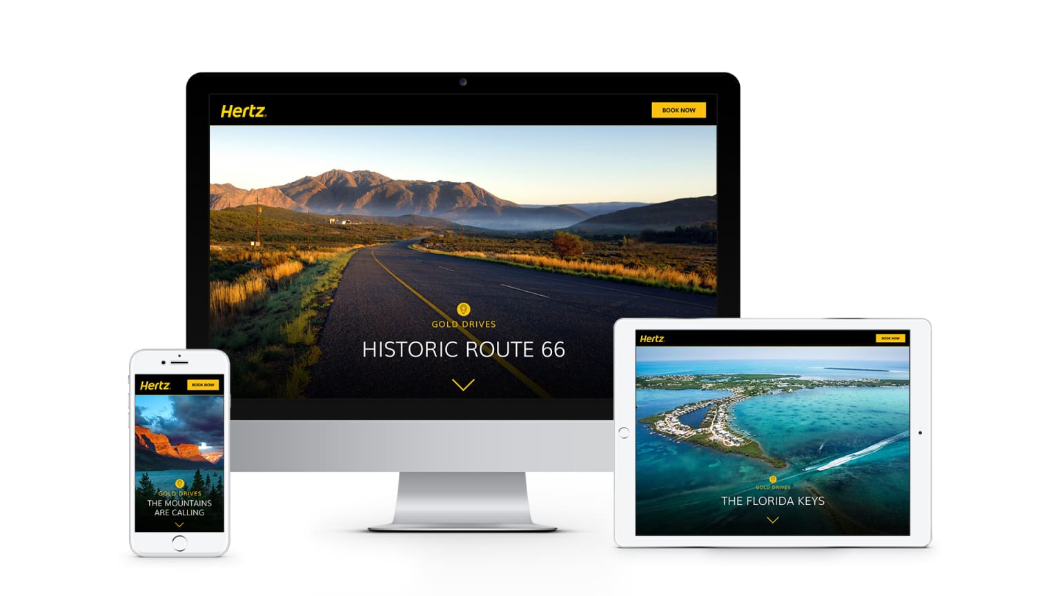 Hertz Gold Drives
