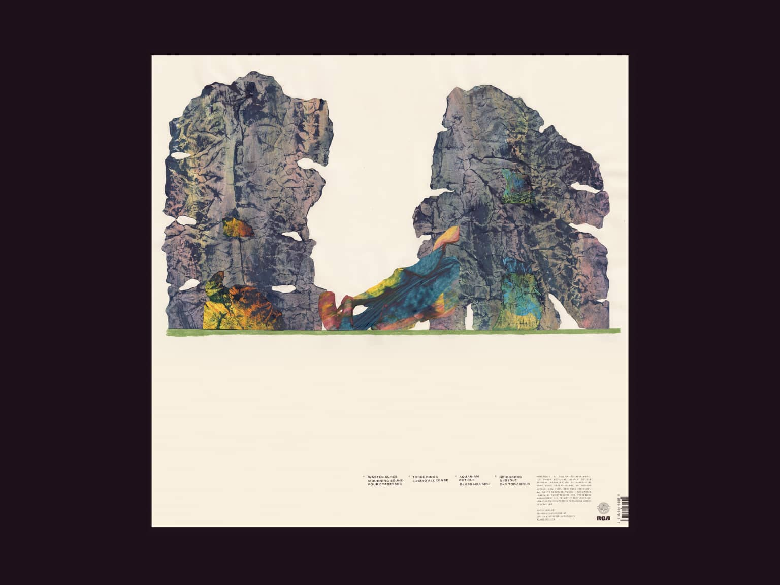 "Grizzly Bear ""Painted Ruins"""