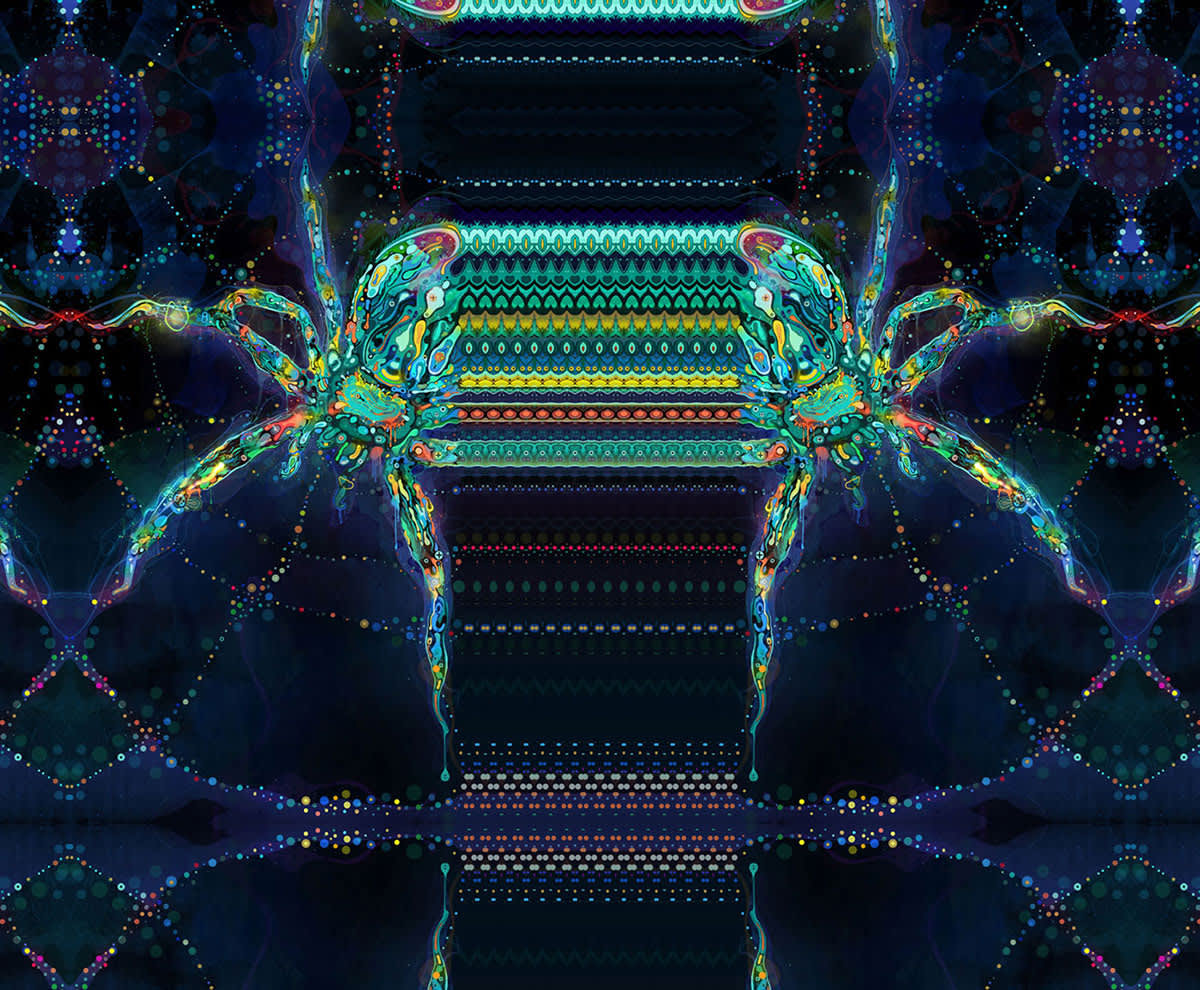 Insect Series