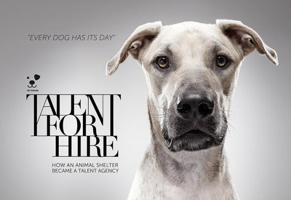 K9 Friends - Talent For Hire