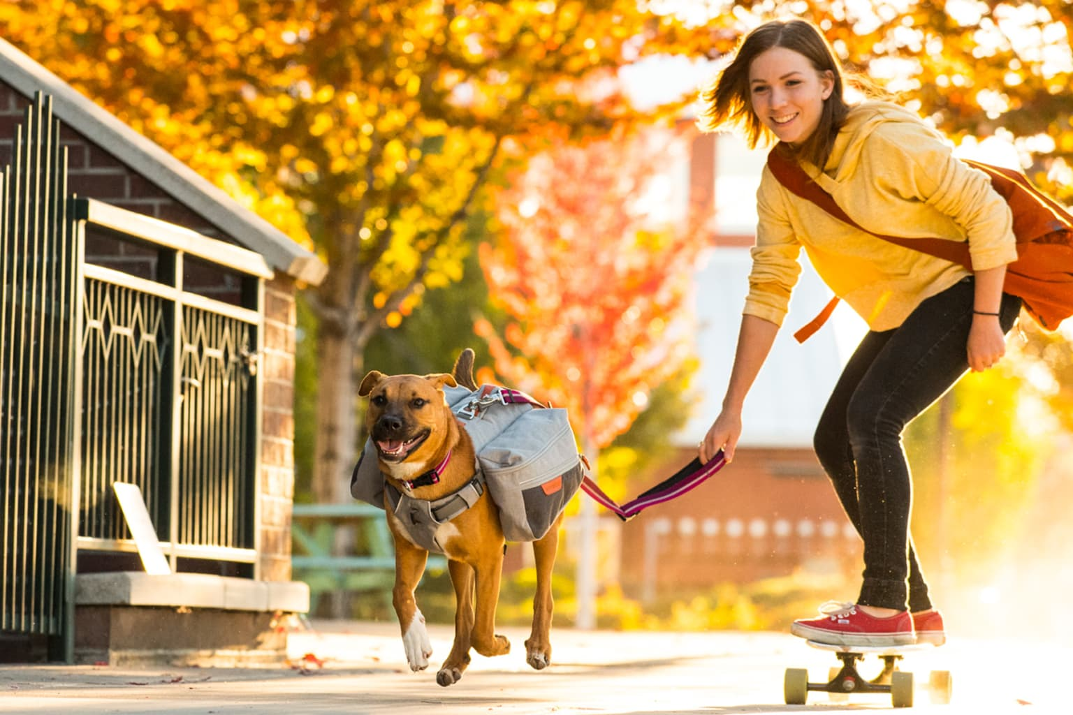 Dogs and Their Best Friends for Ruffwear