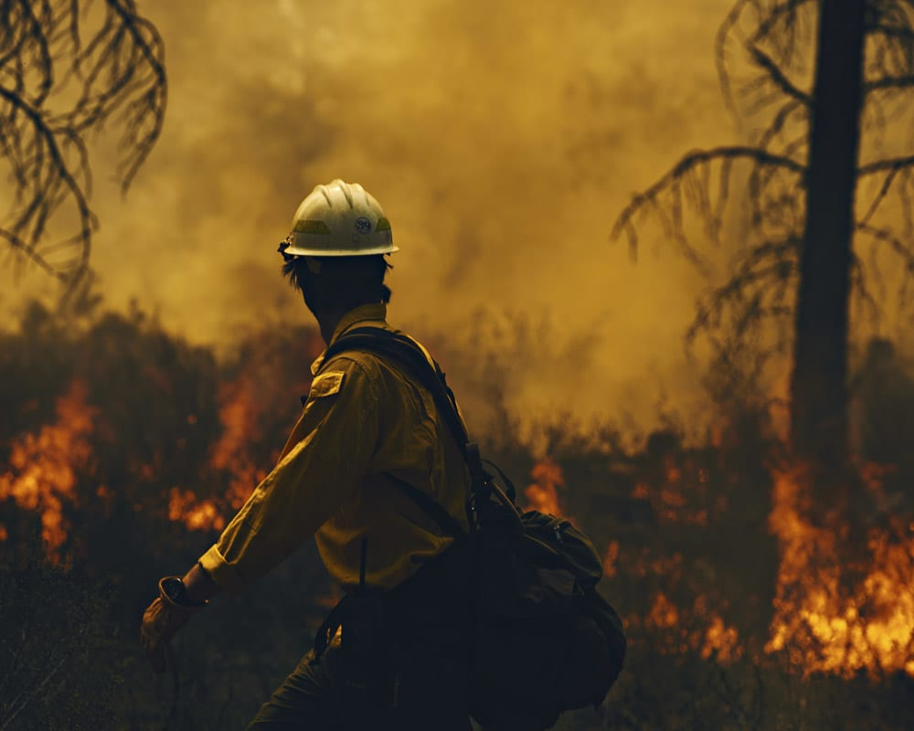 Campaign: USFS Wildfire