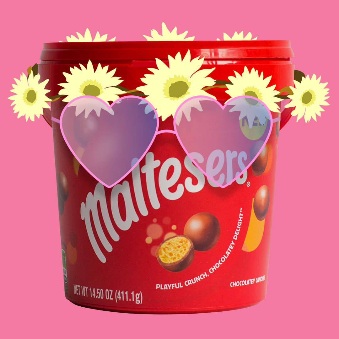 Life of Maltesers Illustrated Posts