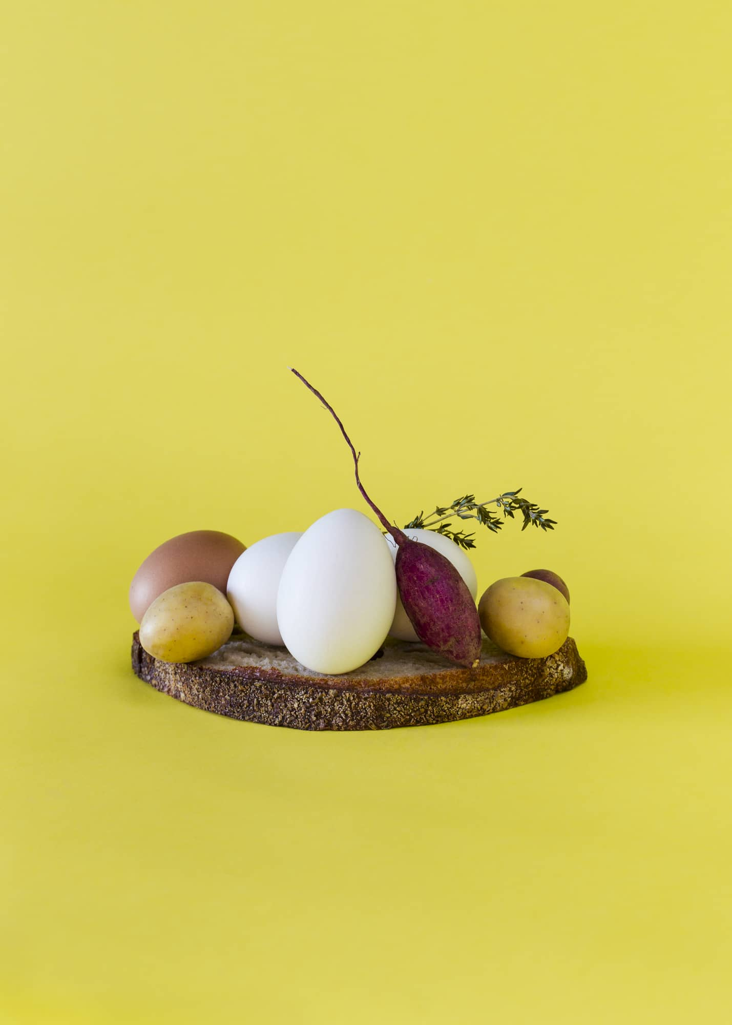 The Living Food Sculptures