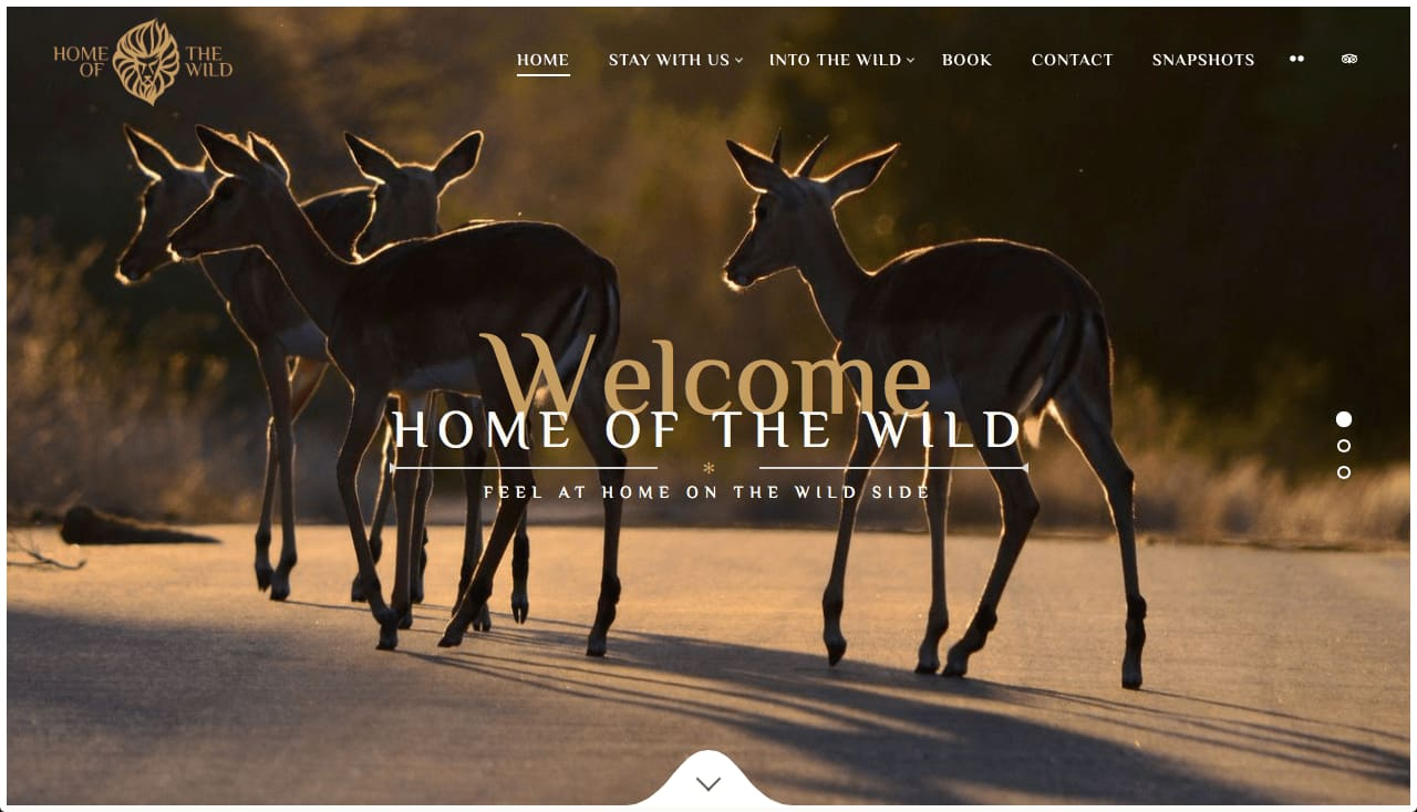 Home of the Wild – Branded Website & Content