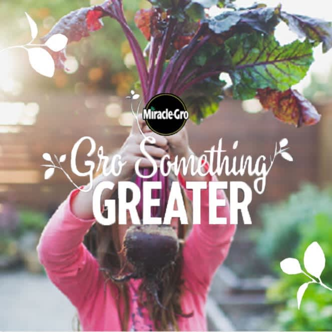 Miracle-Gro: Gro Something Greater
