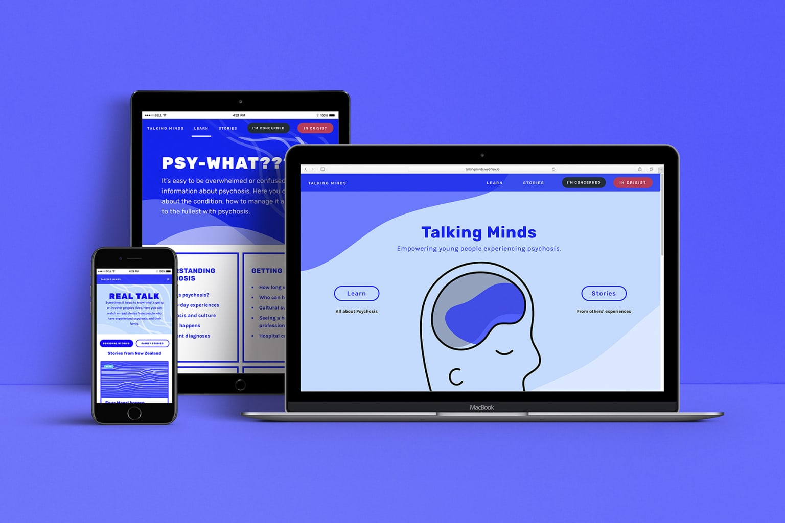 Talking Minds – a website to empower young New Zealanders experiencing psychosis