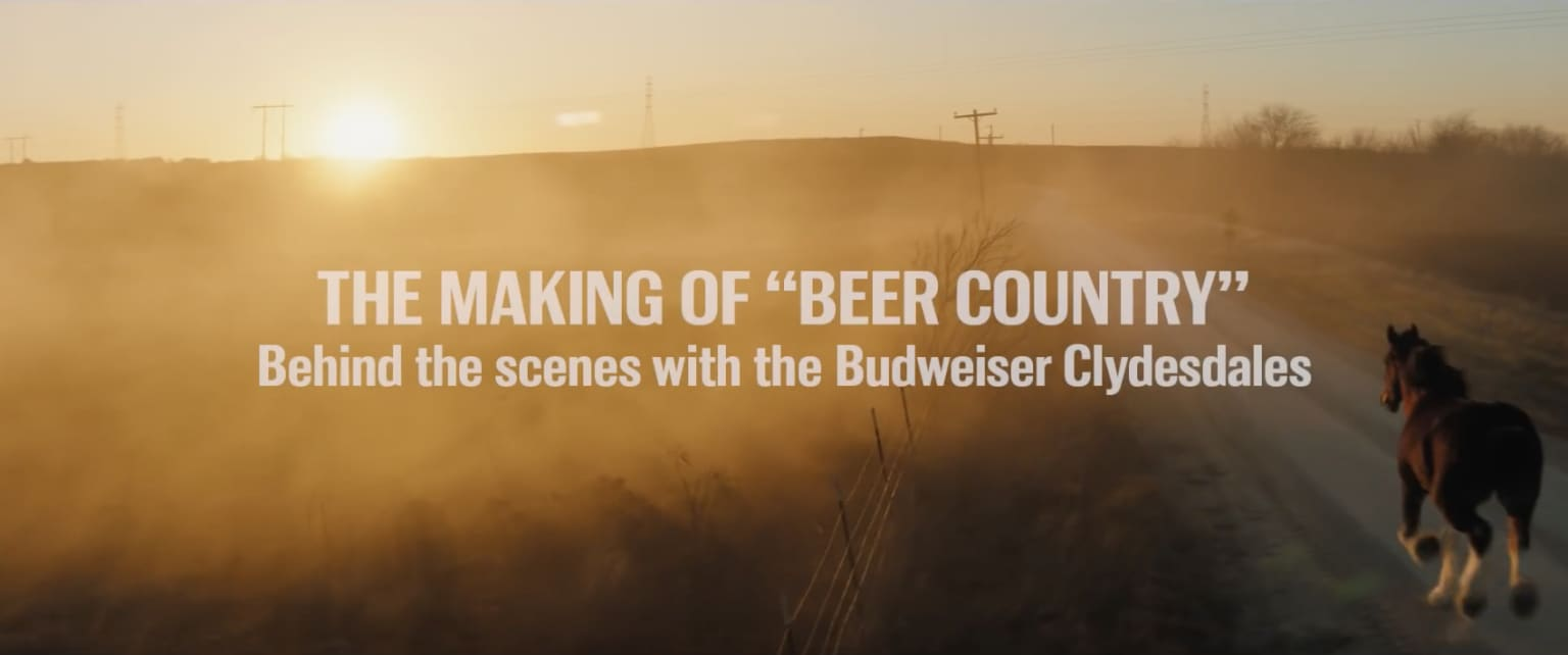 """Budweiser 
