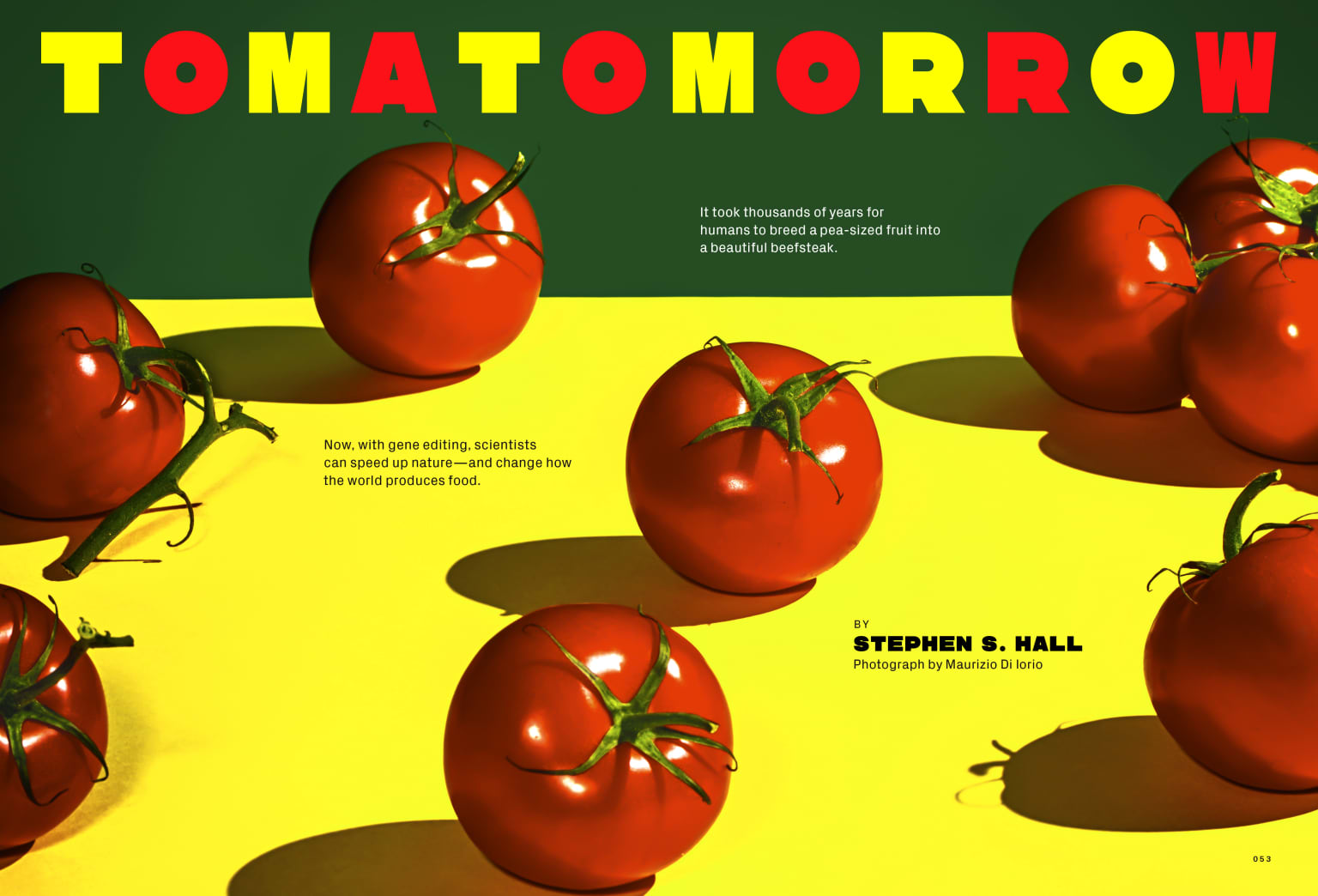 Wired Feature on making a better tomato using Crispr