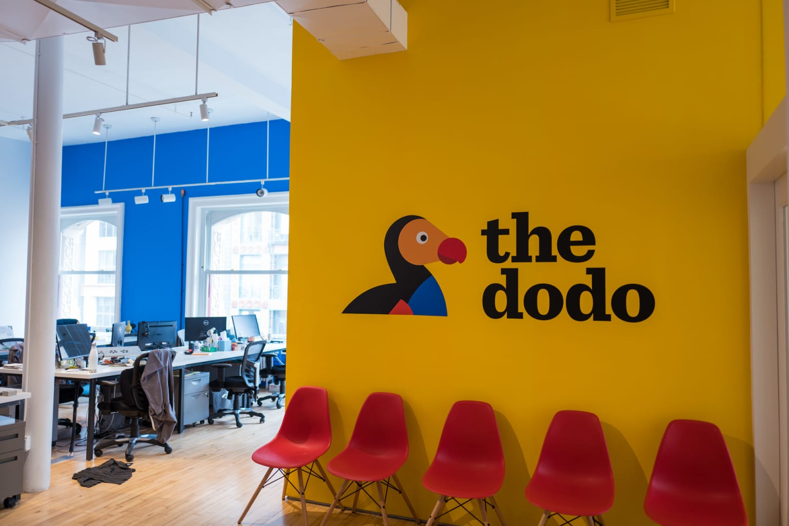 The Dodo Office Illustrations