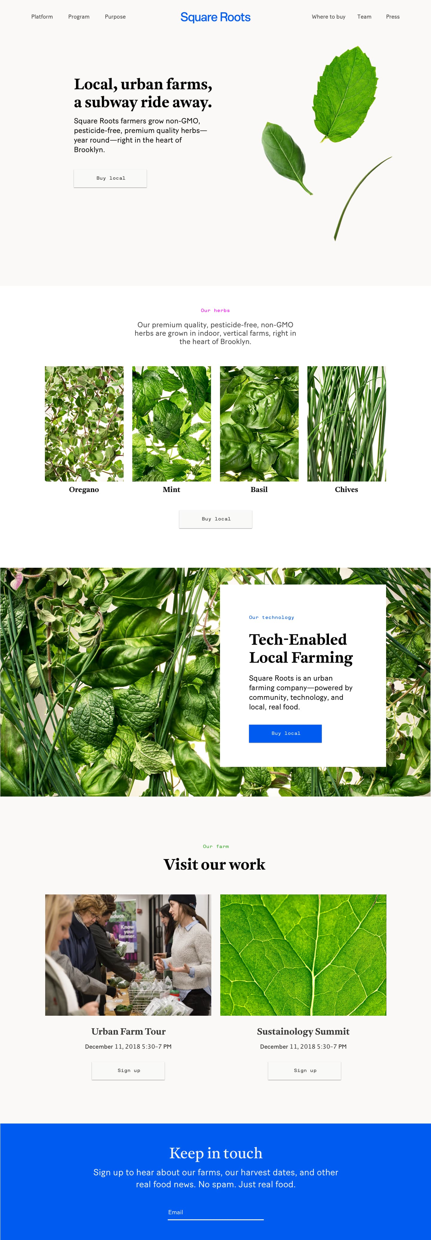 Square Roots: website, branding, and art direction