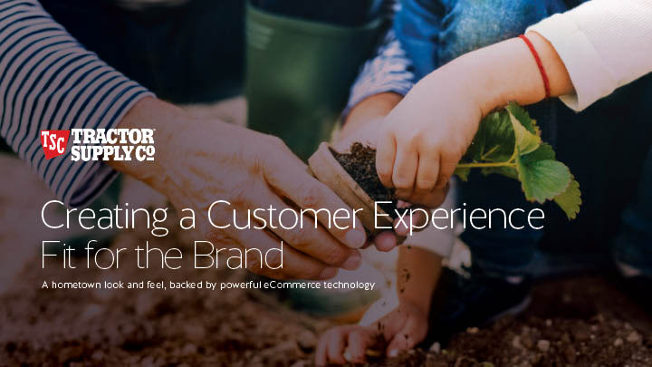 Customer Experience Fit for a Brand