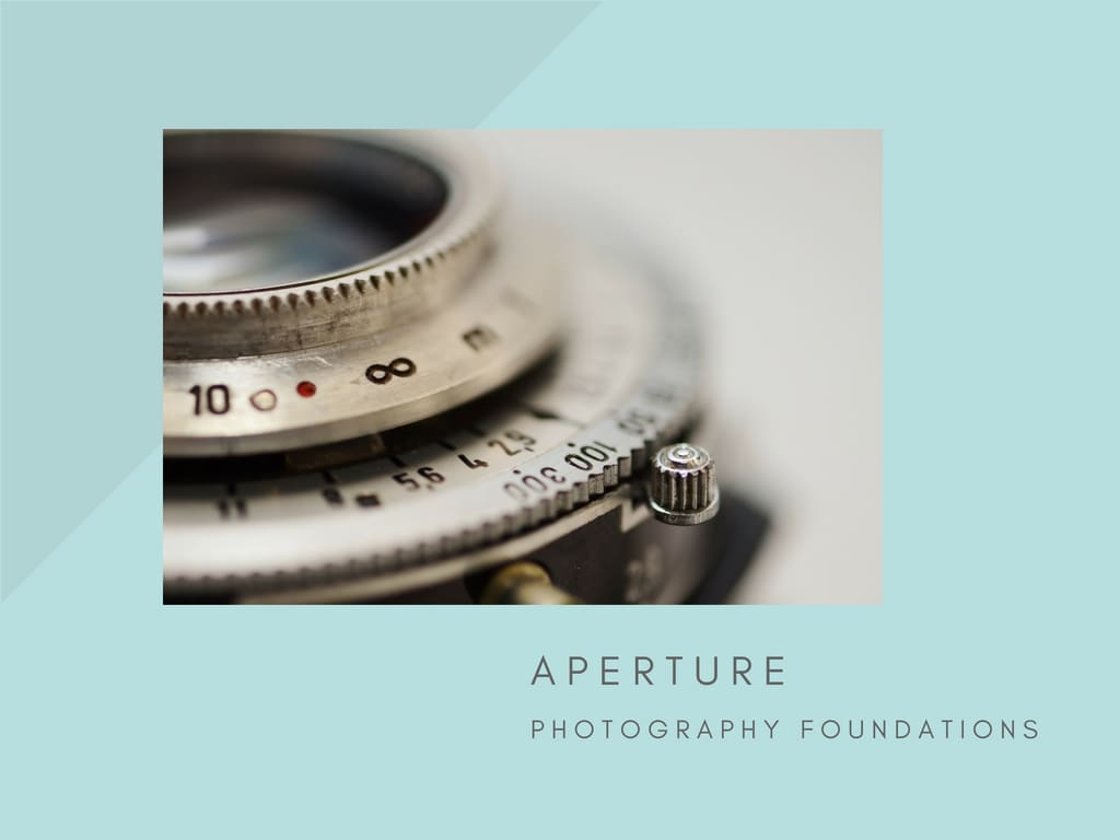 Skillshare Class: Using Aperture to Create Depth of Field