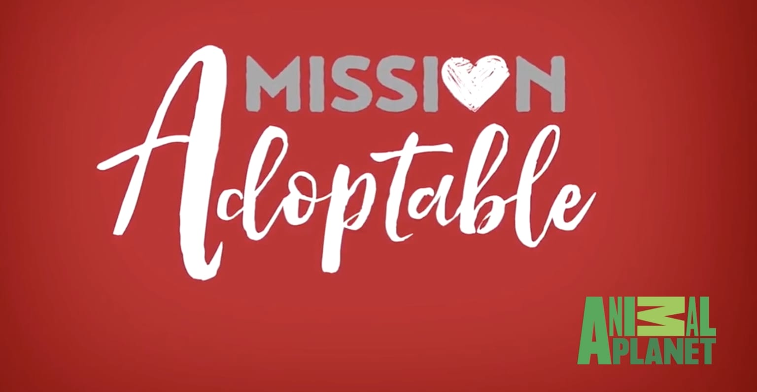 Mission Adoptable