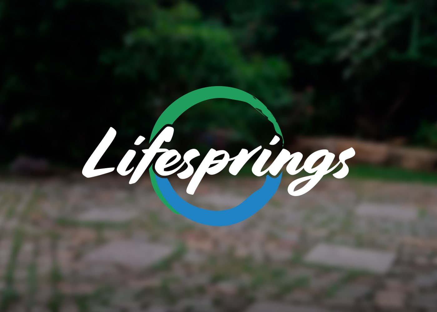 Lifesprings | Logo & Branding