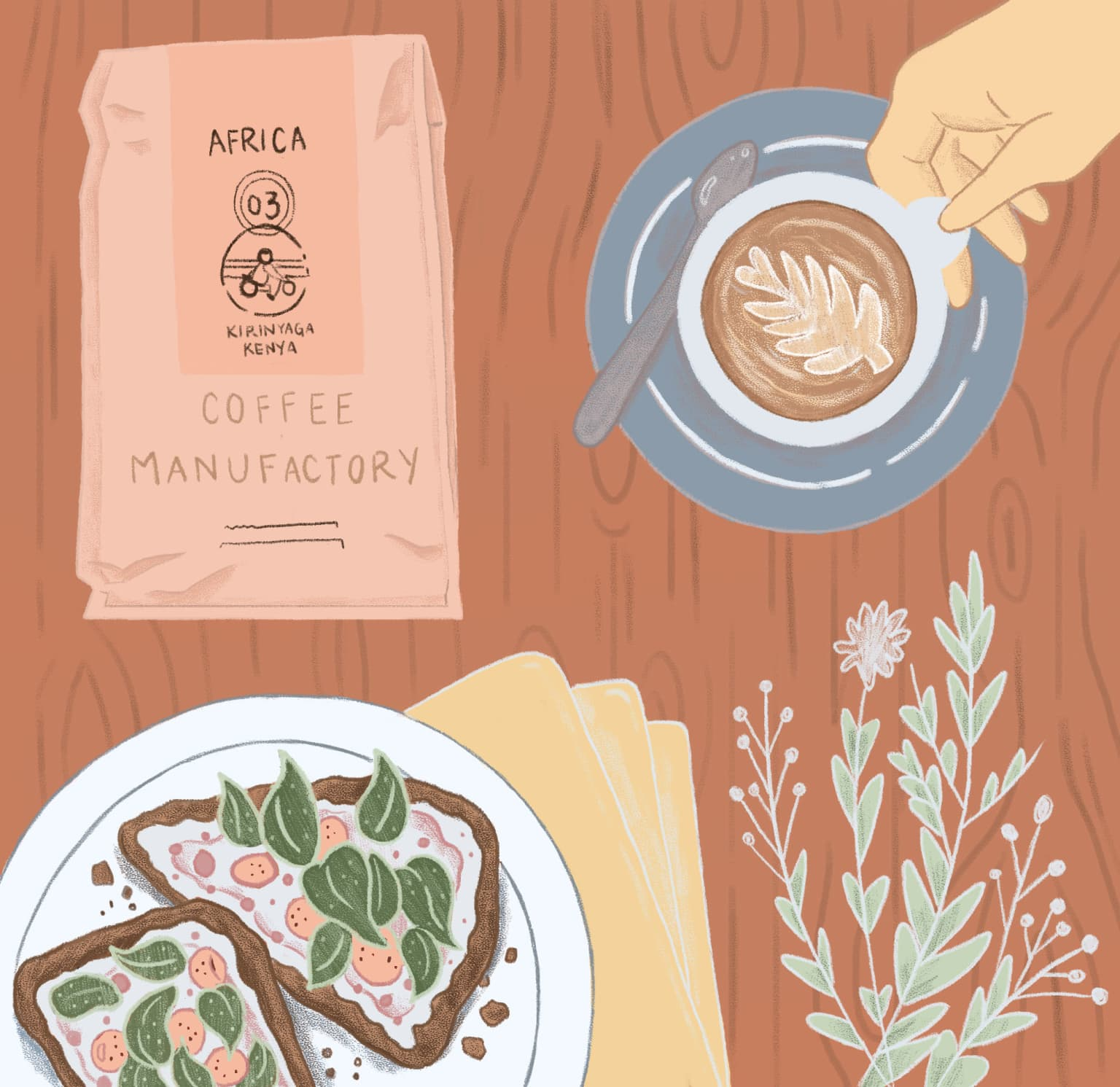 Coffee Illustrations for Coffee Manufactory