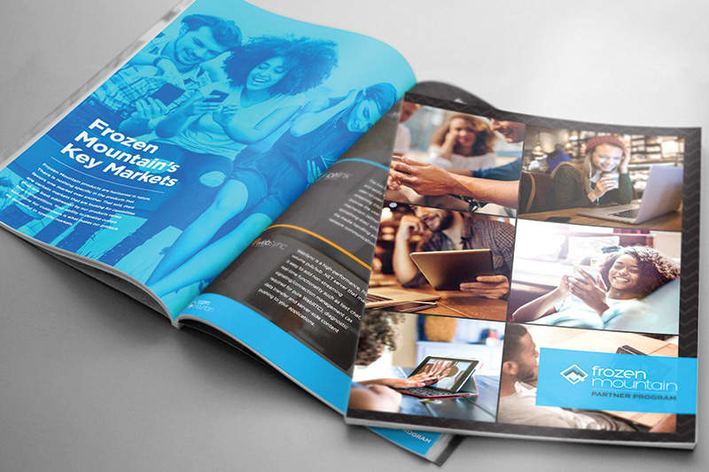 Frozen Mountain Interactive Infographic and Branded Materials