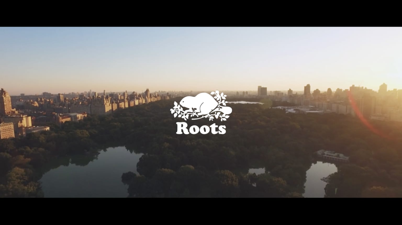 Roots - Sizzle