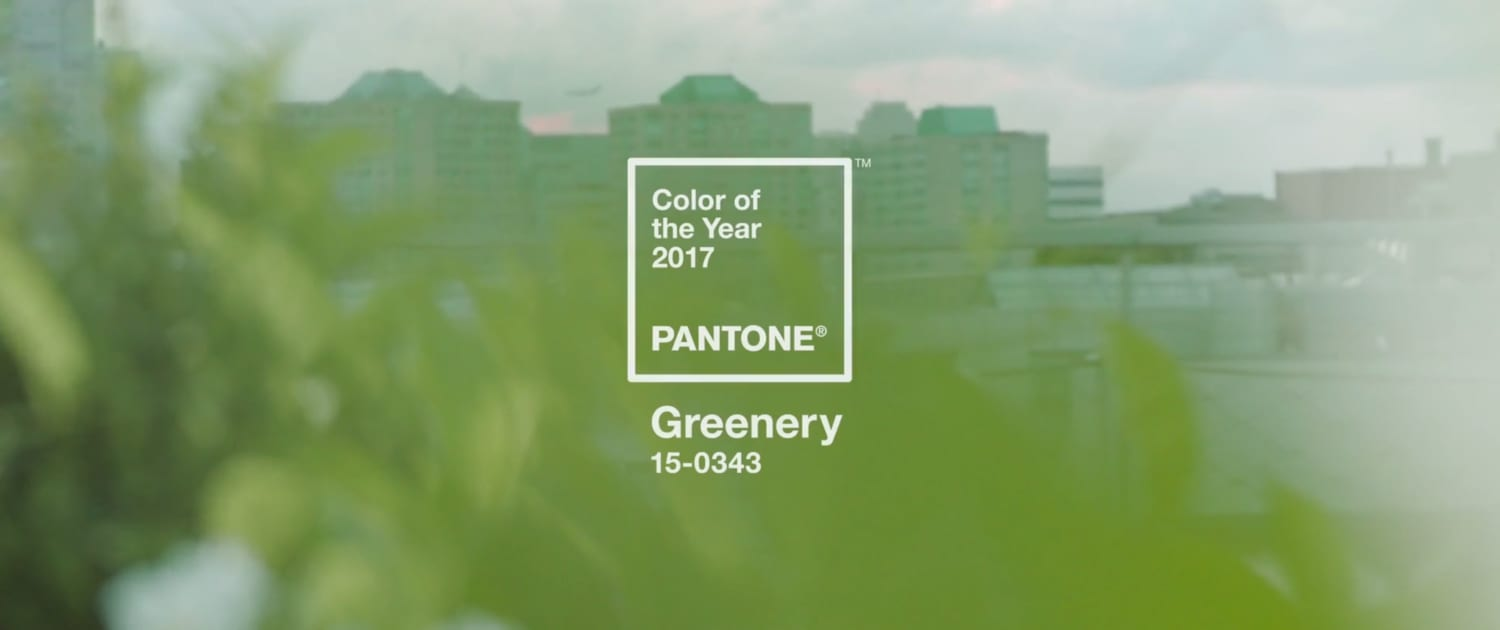 PANTONE Color of the Year 'Greenery'