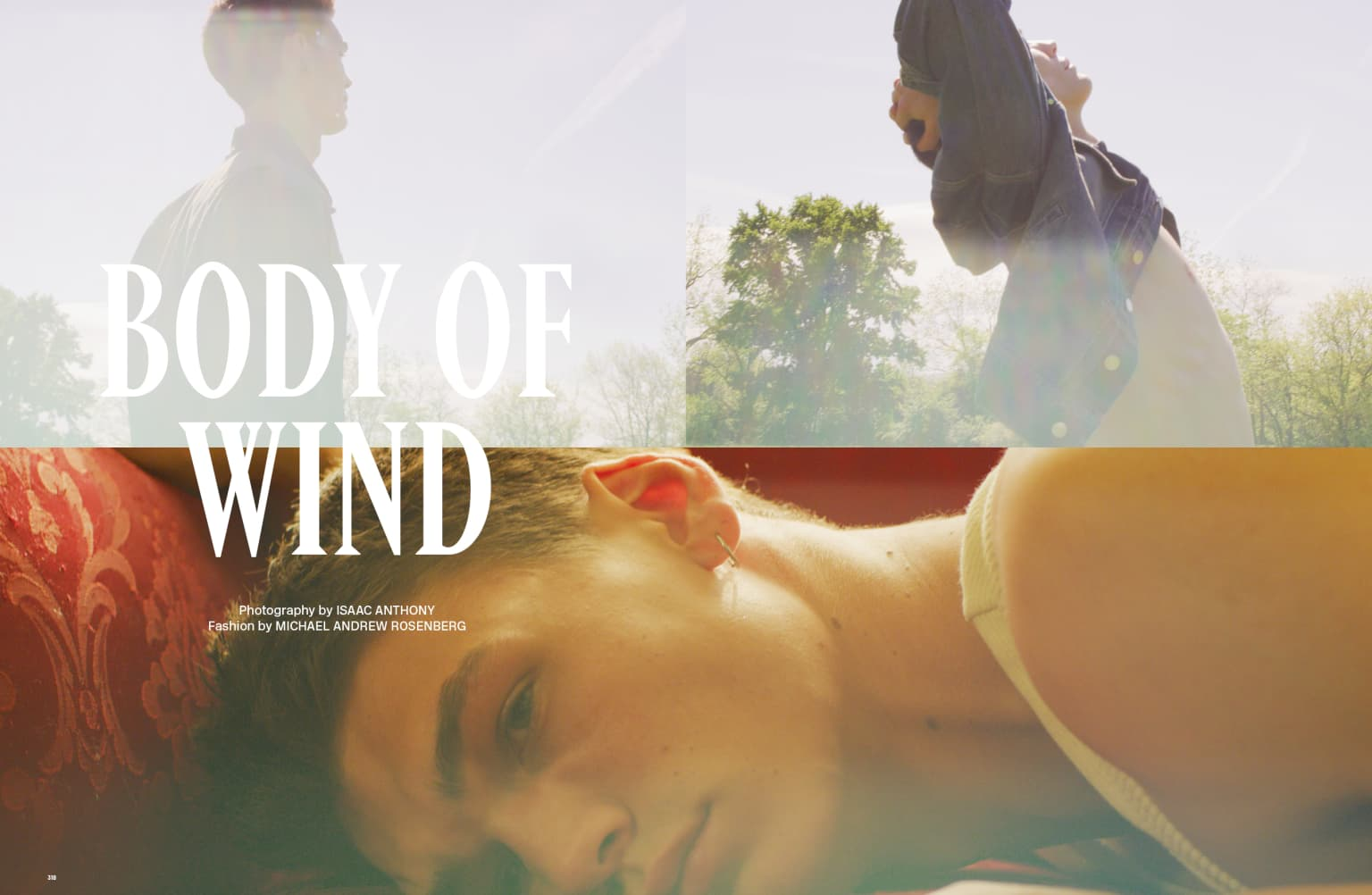 Body of Wind - Behind the Blinds