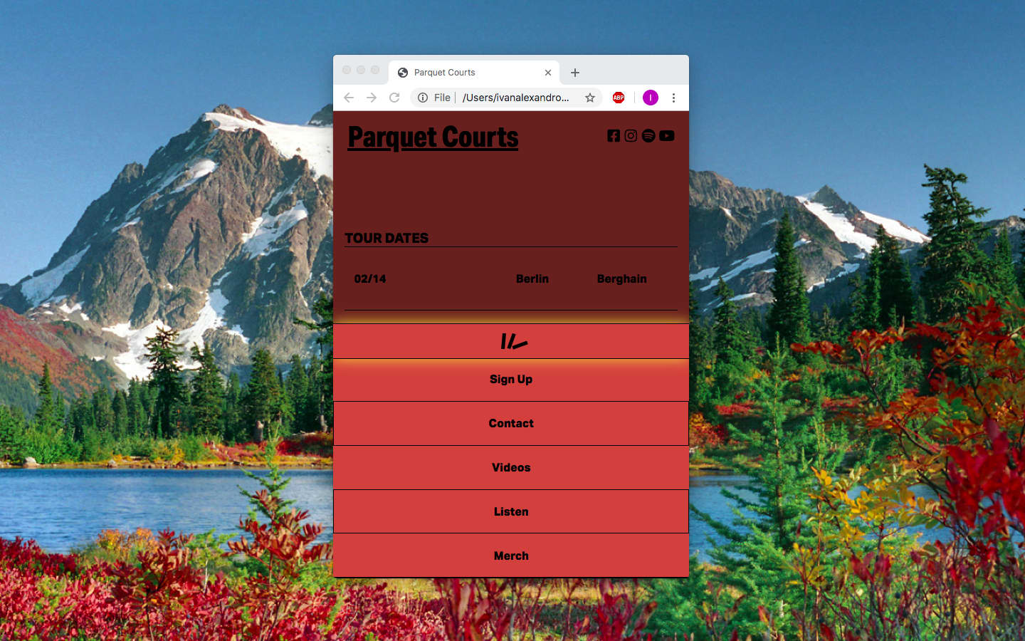 Parquet Courts (Website)