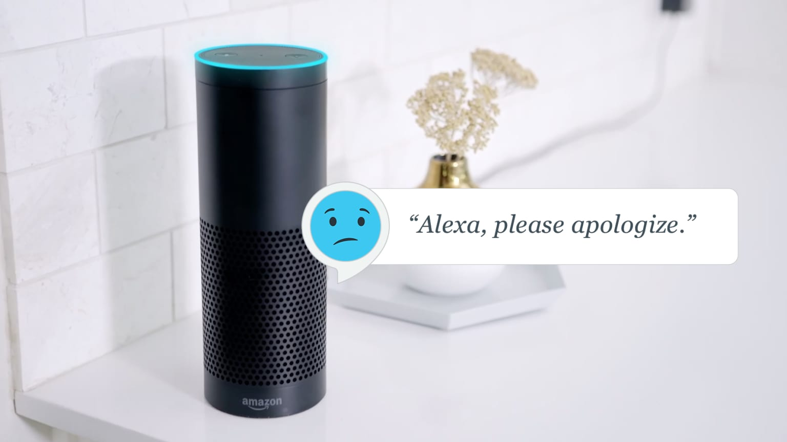 Alexa, Please Apologize
